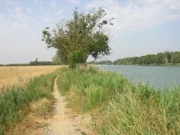 Camps i riu Fluvià